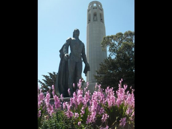 Columbus am Coit Tower SFO