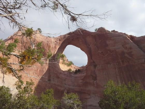 Window Rock AZ