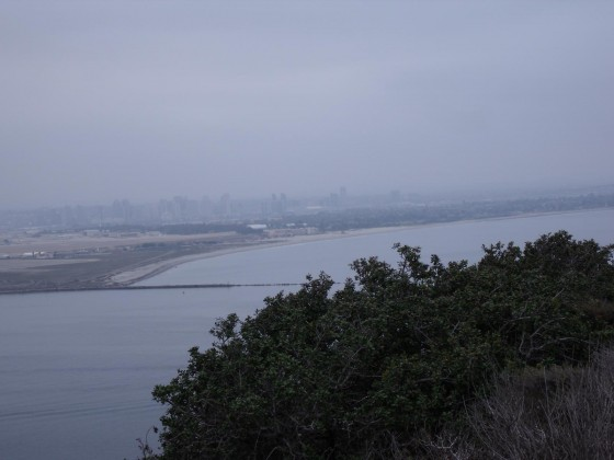 Morgennebel am Point Loma