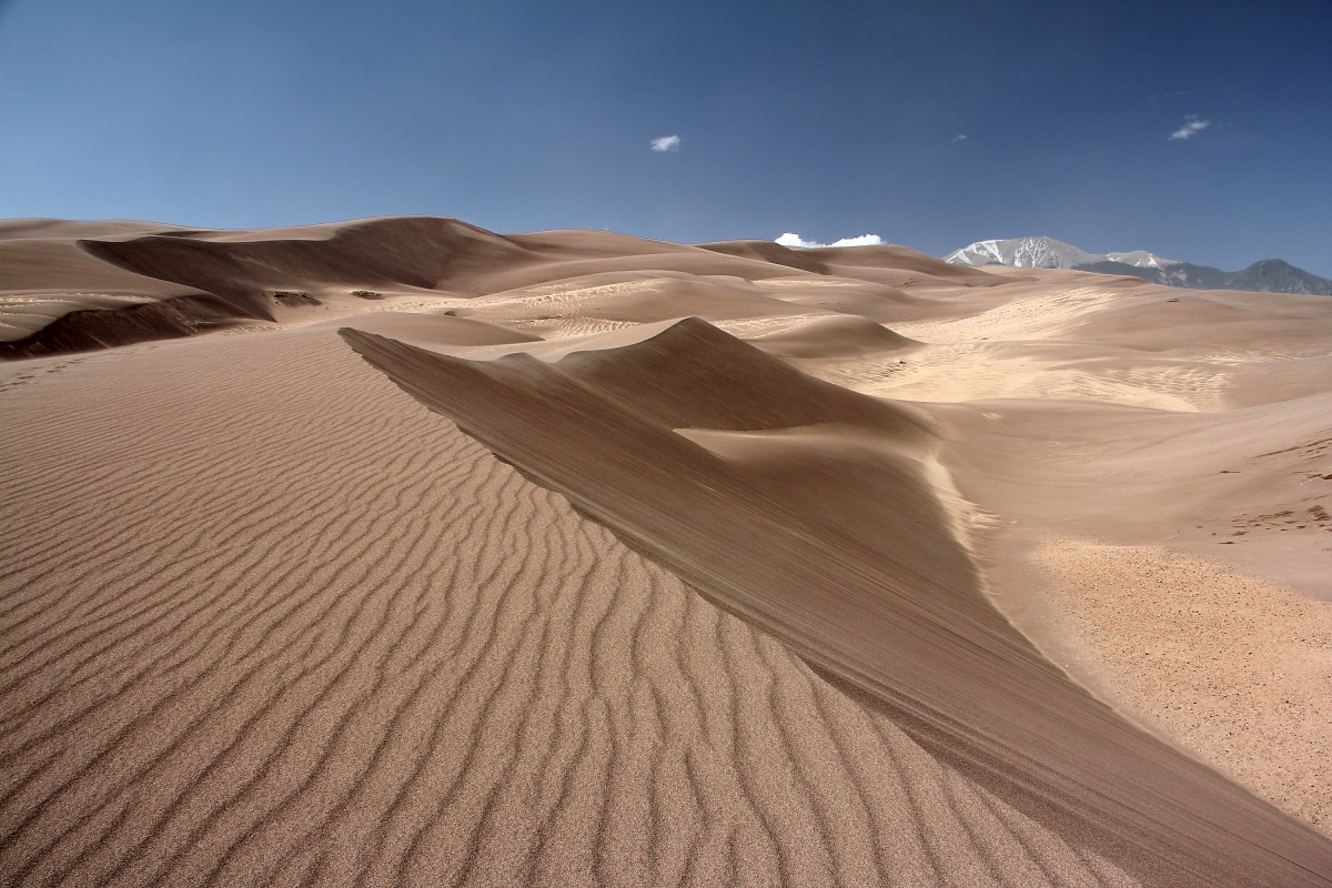 Great Sand Dune N.P.